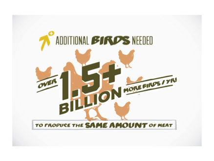 Even if only one-third of broiler chicken producers switched to a slower growing breed, nearly 1.5 billion more birds would be needed annually to produce the same amount of meat currently produced.